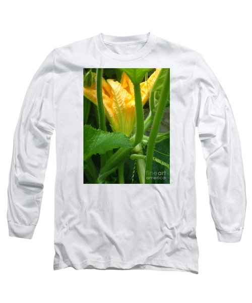 Pumpkin Blossom Long Sleeve T-Shirt by Christina Verdgeline