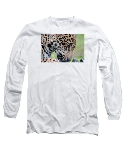 Jaguar And Toy Long Sleeve T-Shirt