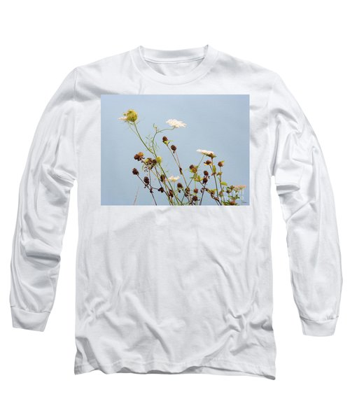 Queen Anne's Lace And Dried Clovers Long Sleeve T-Shirt by Lise Winne