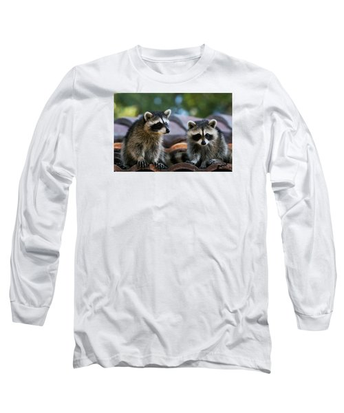 Racoons On The Roof Long Sleeve T-Shirt by Dorothy Cunningham