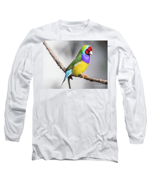 Rainbow Finch Long Sleeve T-Shirt