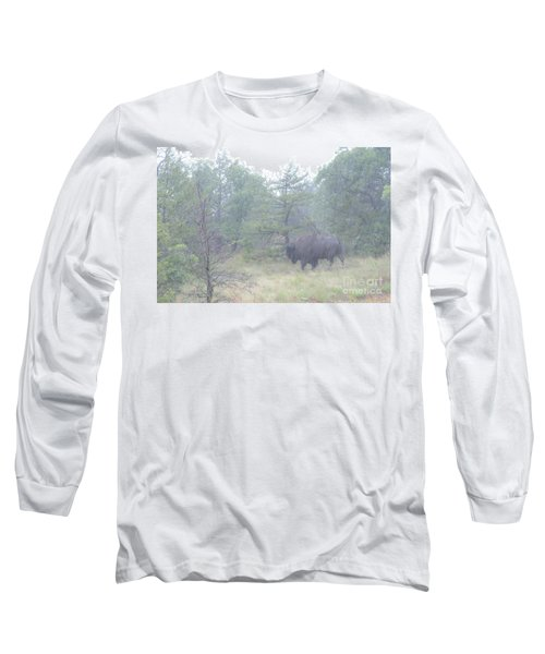 Rainy Day For The Bison Long Sleeve T-Shirt