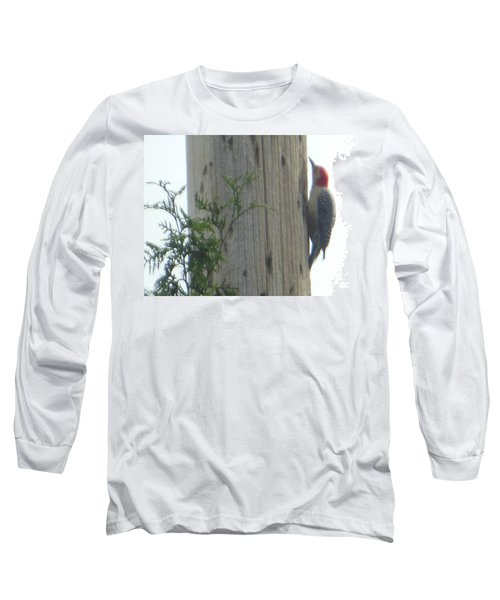 Long Sleeve T-Shirt featuring the photograph Red Bellied Woodpecker by Rockin Docks Deluxephotos