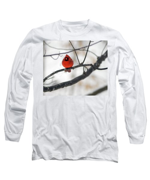 Long Sleeve T-Shirt featuring the photograph Red Cardinal In Snow by Marie Hicks