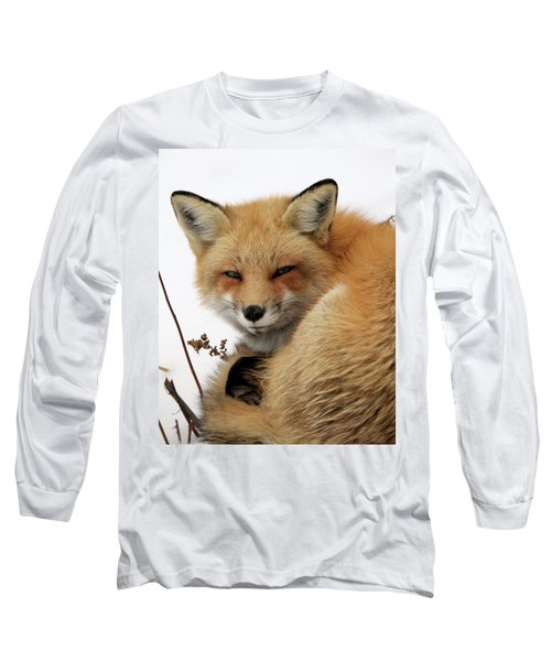 Long Sleeve T-Shirt featuring the photograph Red Fox In Snow by Doris Potter