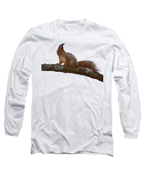 Red Squirrel Transparent Long Sleeve T-Shirt