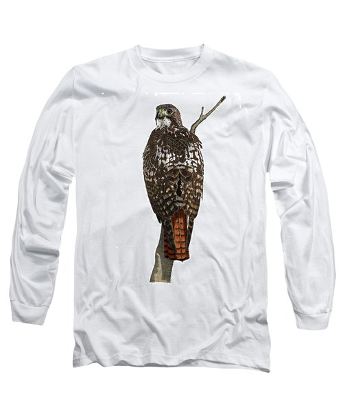 Red-tailed Hawk - Color Long Sleeve T-Shirt