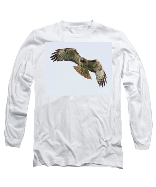 Red Tailed Hawk Finds Its Prey Long Sleeve T-Shirt
