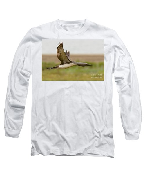 Red-throated Loon In Flight Long Sleeve T-Shirt