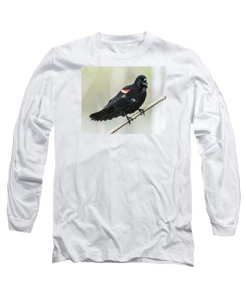 Red-winged Blackbird Singing Long Sleeve T-Shirt