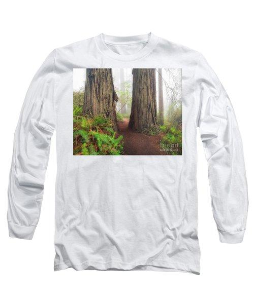 Redwood Trail Long Sleeve T-Shirt