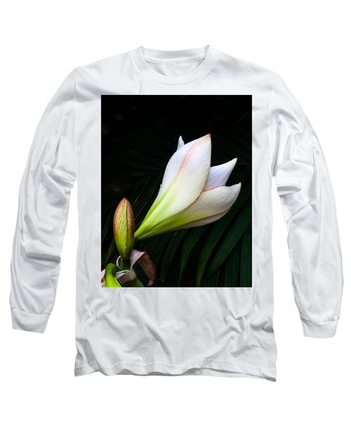 Refined Elegance Long Sleeve T-Shirt