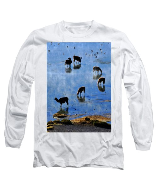 Long Sleeve T-Shirt featuring the photograph Rendezvous by Skip Hunt