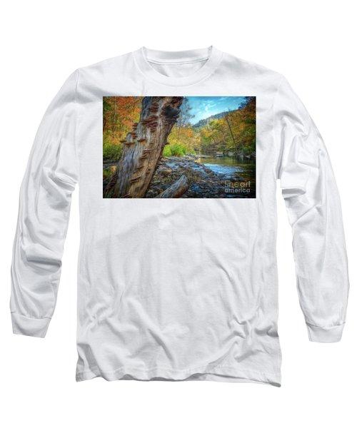 Richland Creek Long Sleeve T-Shirt