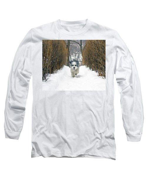 Long Sleeve T-Shirt featuring the photograph Ripley's Run by Keith Armstrong