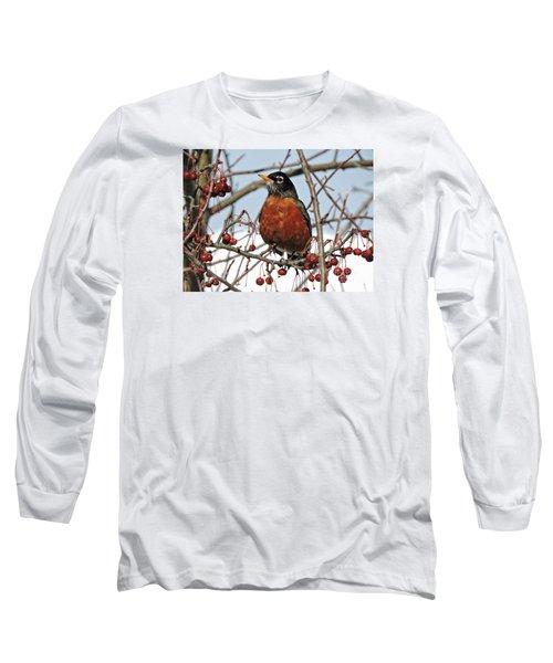 Robin In Winter Long Sleeve T-Shirt by Marcia Lee Jones