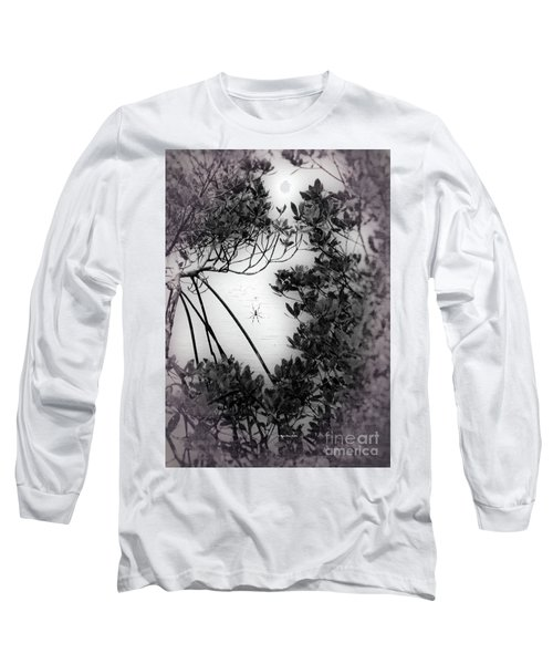 Long Sleeve T-Shirt featuring the photograph Romantic Spider by Megan Dirsa-DuBois