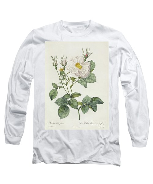 Rosa Alba Foliacea Long Sleeve T-Shirt