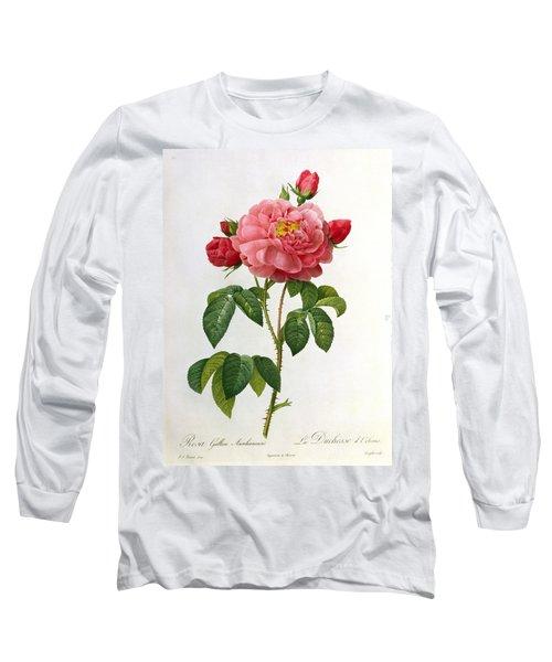 Rosa Gallica Aurelianensis Long Sleeve T-Shirt