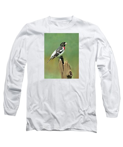 Rose Breasted Grosbeak Long Sleeve T-Shirt by Marion Johnson
