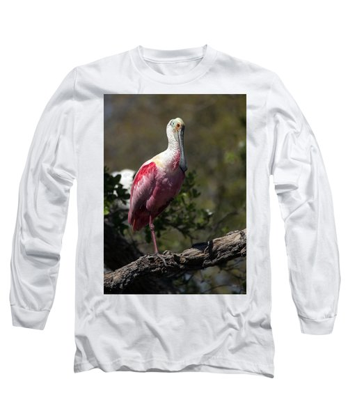 Roseate Spoonbill Long Sleeve T-Shirt by Lamarre Labadie