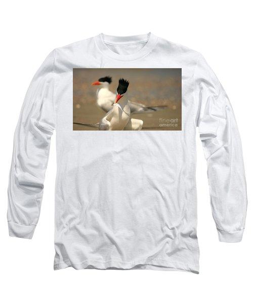 Royal Tern Catch Long Sleeve T-Shirt