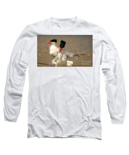 Royal Tern Catch Long Sleeve T-Shirt
