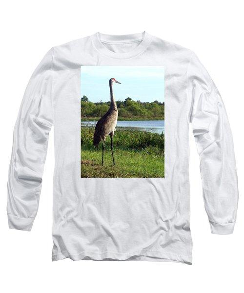 Long Sleeve T-Shirt featuring the photograph Sandhill Crane 019 by Chris Mercer