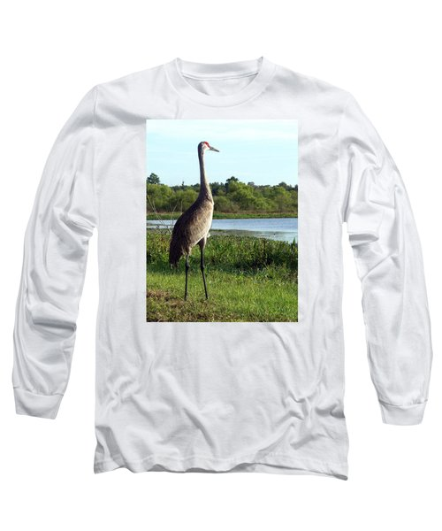 Sandhill Crane 019 Long Sleeve T-Shirt