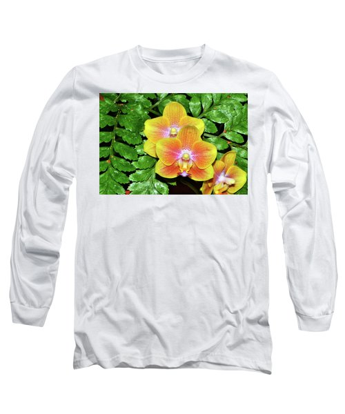 Sara Gold Orchids 003 Long Sleeve T-Shirt by George Bostian