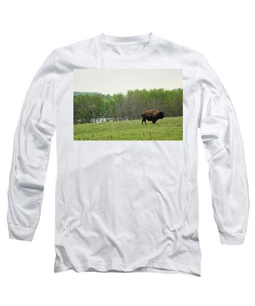 Saskatchewan Buffalo Long Sleeve T-Shirt
