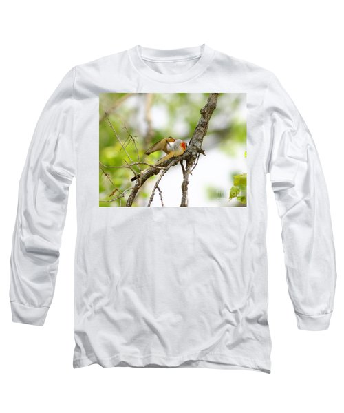 Scissortail Ballet Long Sleeve T-Shirt by Robert Frederick