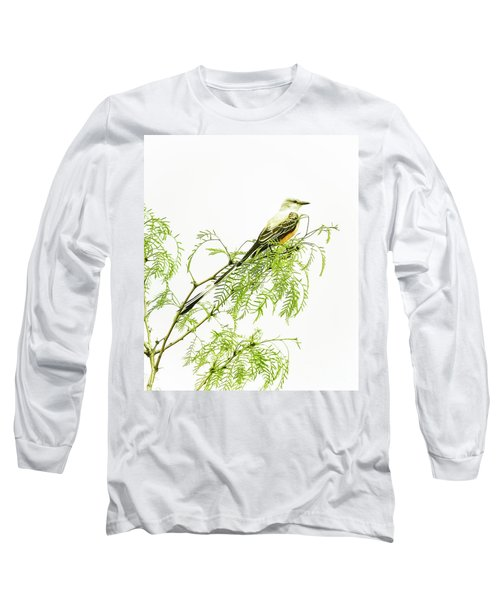 Scissortail On Mesquite Long Sleeve T-Shirt by Robert Frederick