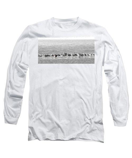 Seascape Gulf Coast, Ms F10a Long Sleeve T-Shirt