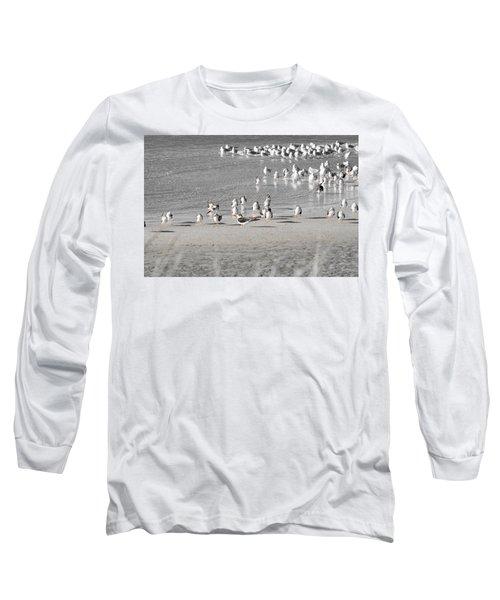 Seascape Gulf Coast, Ms F10r Long Sleeve T-Shirt