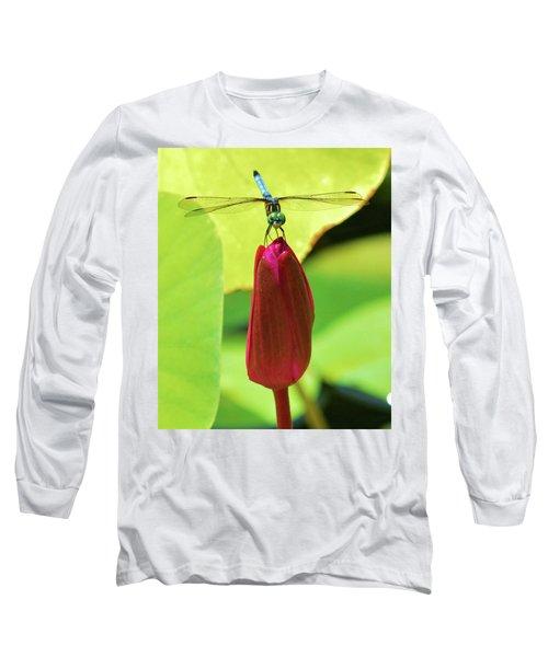 Settled Dragonfly Long Sleeve T-Shirt
