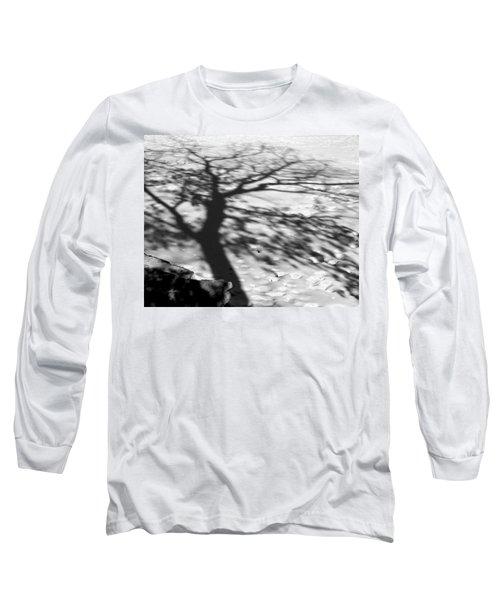 Shadow Tree  Herrick Lake  Naperville Illinois Long Sleeve T-Shirt by Michael Bessler