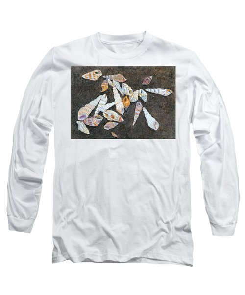 Shells From The Sea Of Galilee Long Sleeve T-Shirt