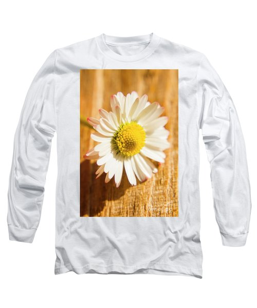 Simple Camomile  In Sunlight Long Sleeve T-Shirt