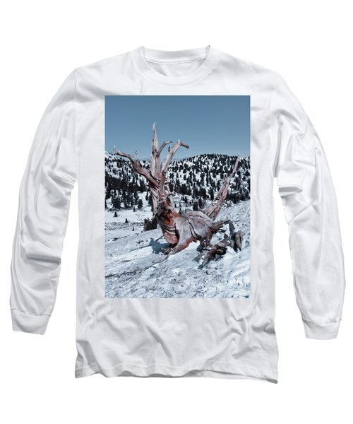 Long Sleeve T-Shirt featuring the photograph Skating Pine by Mae Wertz
