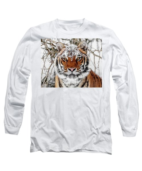 Snow Capped Siberian Long Sleeve T-Shirt
