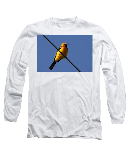 Spot Breasted Oriole Long Sleeve T-Shirt