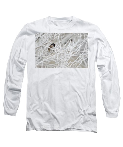 Spotted Towhee In Winter Long Sleeve T-Shirt
