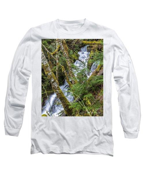 Spring Cascade Long Sleeve T-Shirt by Chuck Flewelling