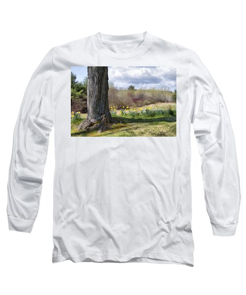 Spring Daffodils  Long Sleeve T-Shirt by Betty Pauwels