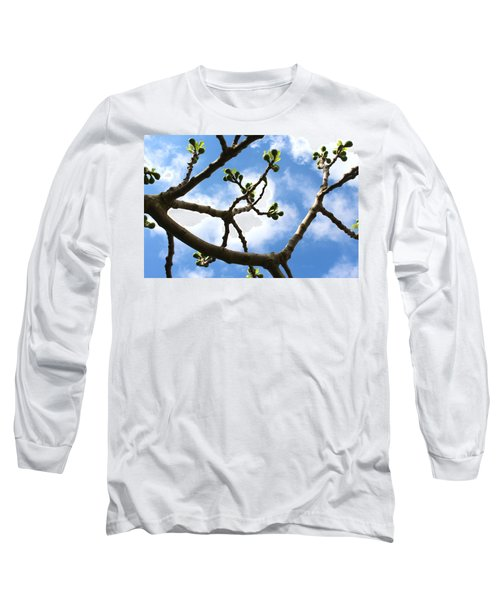 Fig Tree In Spring Long Sleeve T-Shirt