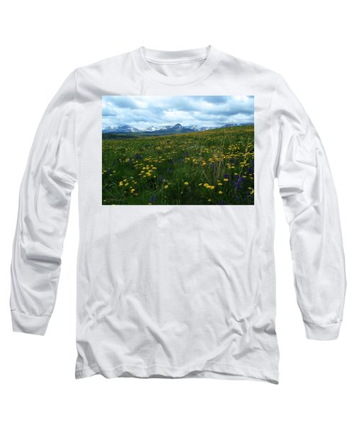 Spring Flowers On The Front Long Sleeve T-Shirt