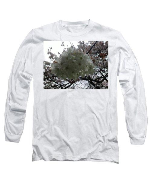 Spring Long Sleeve T-Shirt