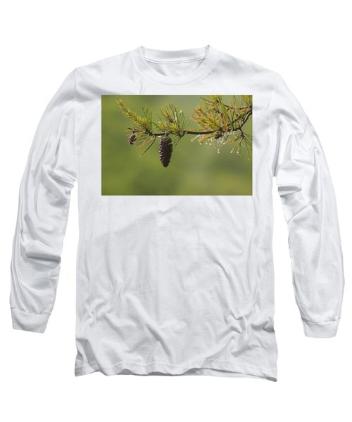 Spring Rain And Pinecone Long Sleeve T-Shirt by Michael Eingle