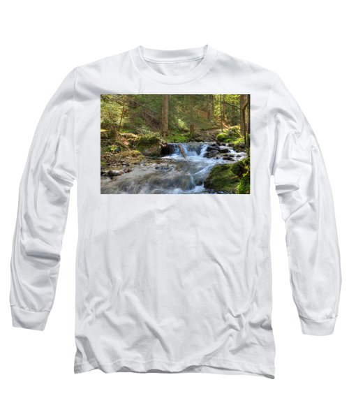 Spring Run Off Long Sleeve T-Shirt by Sean Allen